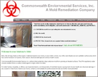 Common Wealth Environmental Services Inc